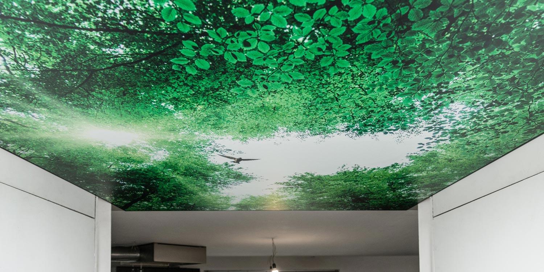 Plafond photo
